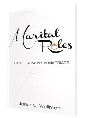 Marital Roles 3D copy